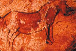 Arte parietale, grotta di Niaux